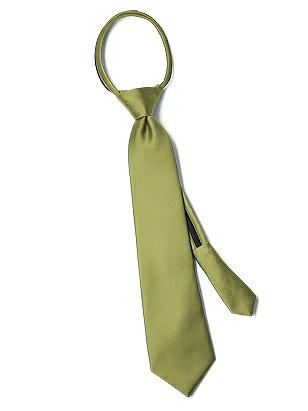 "Boy's 14"" Duchess Satin Zip Neck Tie http://www.dessy.com/accessories/boys-14-inch-duchess-satin-zip-neck-tie/"